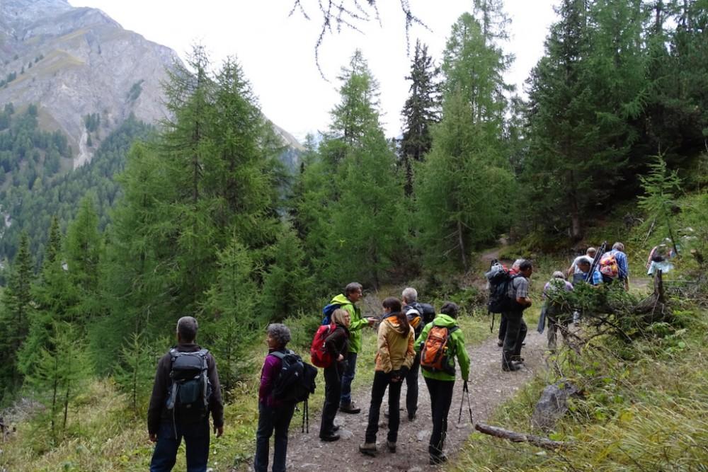 2015.09. NVO im Nationalpark (Val Trupchun) 10.  (Stefan Ziegler)